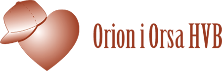 Orion Orsa Retina Logo
